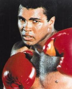 ALI: still a knock-out